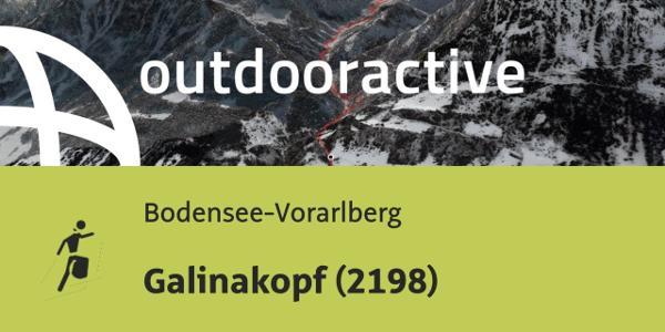 Skitour in der Region Bodensee-Rheintal: Galinakopf (2198)