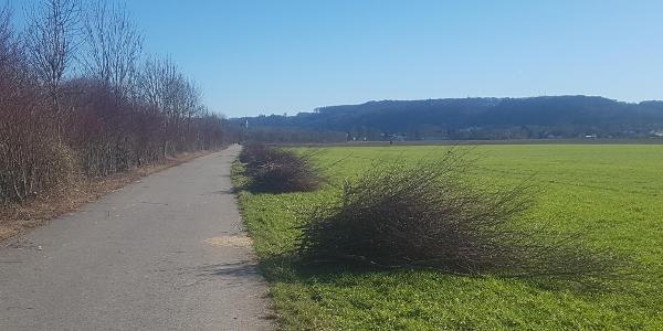 Weg von Mintard nach Kettwig