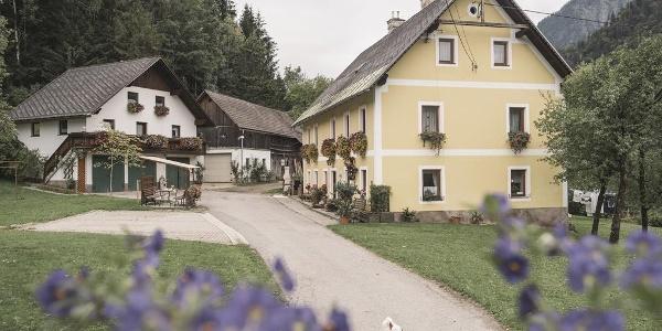 Unser Hof in Landl