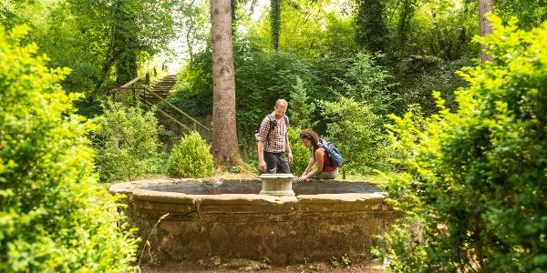 Im Garten von Kloster Steinfeld