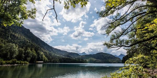 Sommer am Alpsee, Schwangau