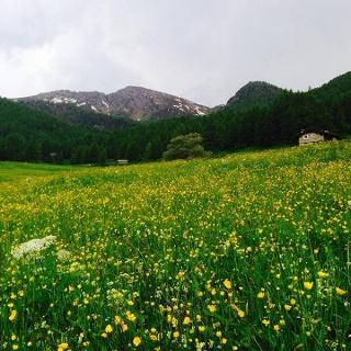 Beim Ortsteil (Borgata) Grangiassa.