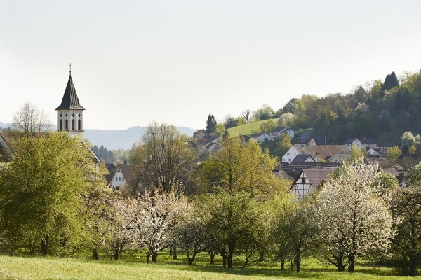 Blick auf Stahringen mit Streuobstwiesen und Kirchturm