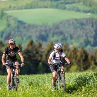Mountainbiken in der Buckligen Welt