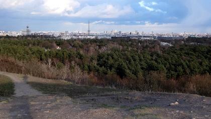 Blick vom Drachenberg zum Funkturm