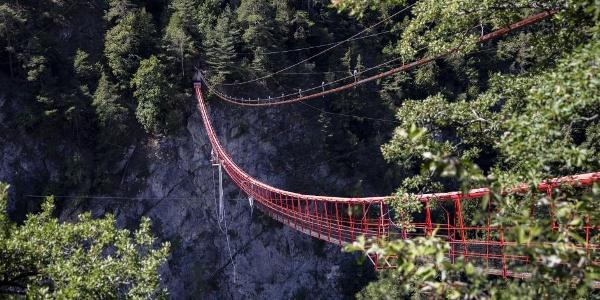 Niouc suspension footbridge