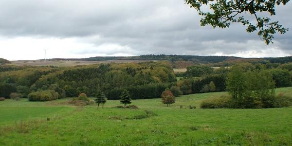 Felderlandschaft im Hunsrück bei Kommen