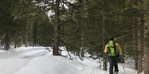 Aufstieg neben der Mautstrasse