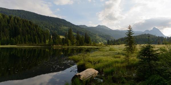 Spechtensee bei Wörschachwald: Blick gegen Nordosten mit Hochtausing im Toten Gebirge