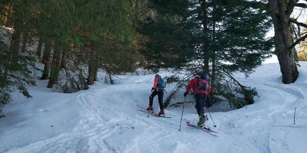 Skitourengeher im Aufstieg zum Eineguntkopf