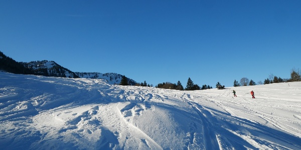 Fresh snow on the ascent to the Eineguntkopf