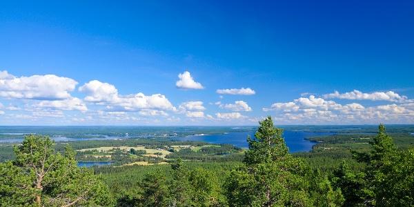 Summer at Vuokatinvaara, Vuokatti Finland