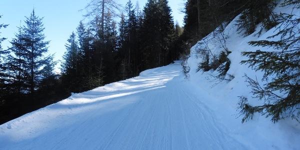 Die Schlittenbahn in Weissenbach der man für 3 Kehren folgt