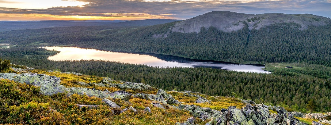 Fjell landscape in Lapland