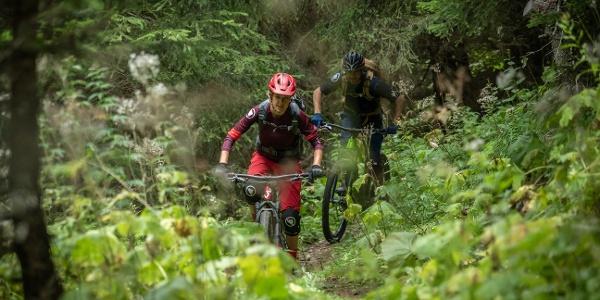 Zwei Biker im Wald