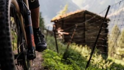 Mountainbiker auf einer Alm im Grächen