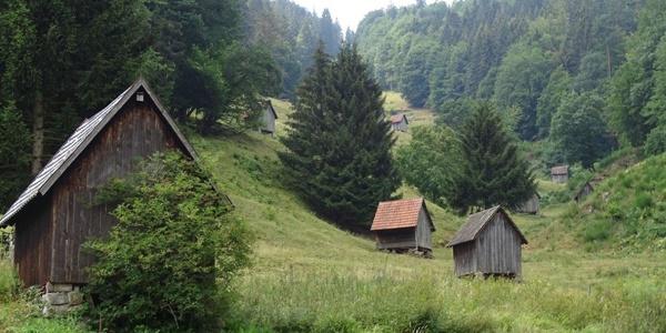 Heuhütten im Sersbachtal bei Forbach-Bermersbach