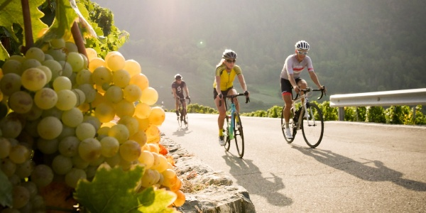 3 cyclists in the Valais vineyard with a bunch of grapes