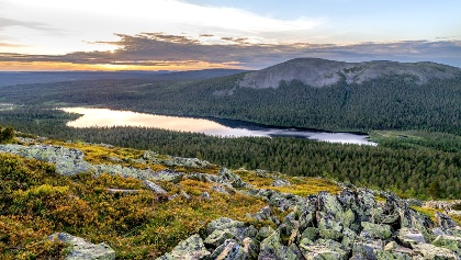 Fell landscape in Lapland