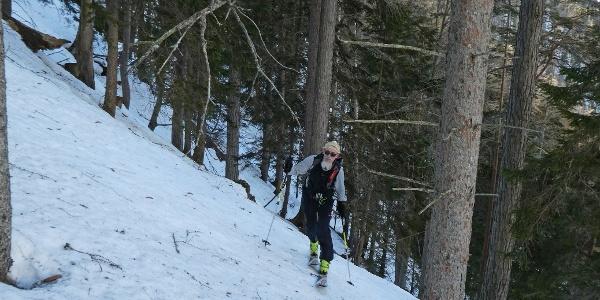 Aufstieg im Steilwald des unteren Karlgrabens