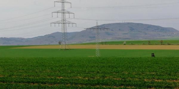 Donnersberg Blick