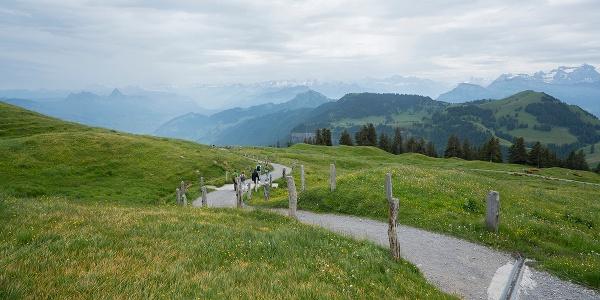Weg Richtung Chäserenholz