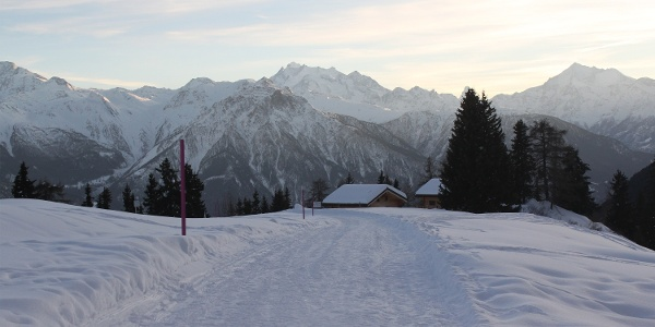 Winterwanderung Riederalp, Golmenegg, Restaurant Adler und retour