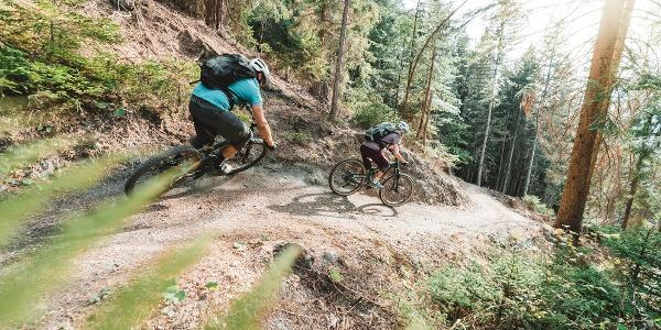 Abfahrt von Giw nach Visp mit dem Mountainbike