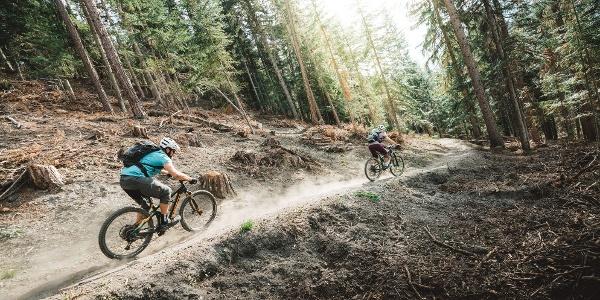 Mit dem Mountainbike bergab durch den Wald