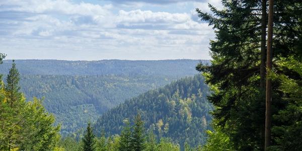 Es warten tolle Ausblicke auf die bewaldeten Höhen