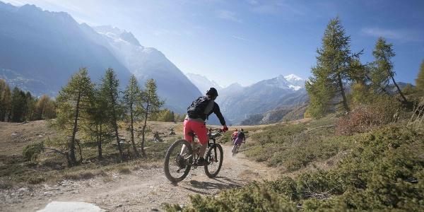 Abstieg mit dem Grächen Family Bike