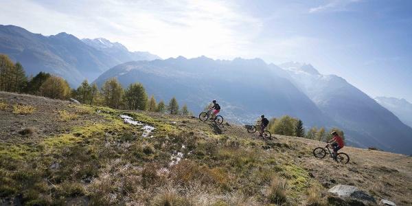 3 VTTistes avec une magnifique vue sur les montagnes valaisannes
