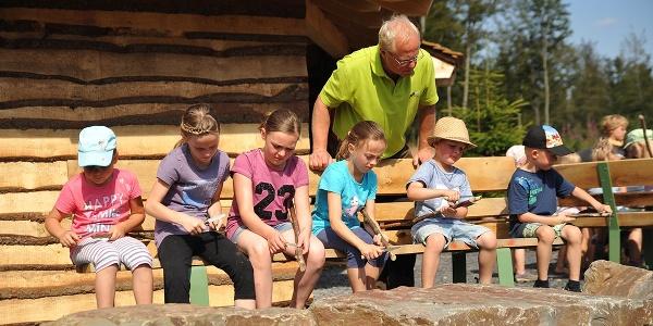 Waldpädagogik Wisent Wildnis Schnitzen