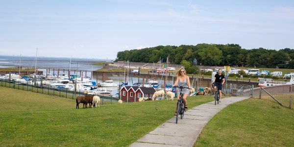 Radfahren in Dangast