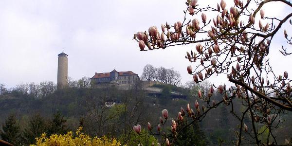Blick aus dem Ziegenhainer Tal zum Fuchsturm