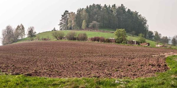 Adamsberg in Altendorf
