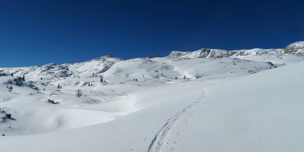 Zu Beginn folgt man der Wintermarkierung Richtung Guttenberghaus