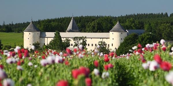 Schloss Ottenschlag