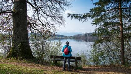 Rundweg um den Abtsdorfer See