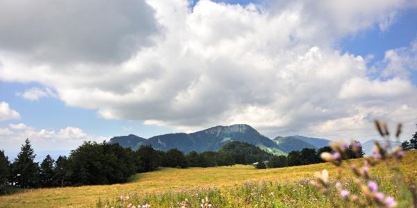 Auf der Balmberg-Chamben-Rundwanderung.