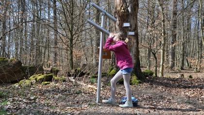 Tiergarten_Mädchen schaut durch Fernrohr