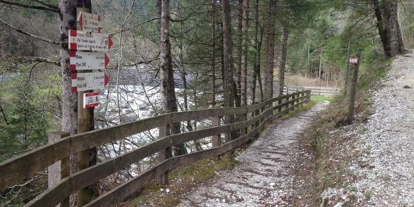 Strada di Albarea Bassa - Torrente Grigno