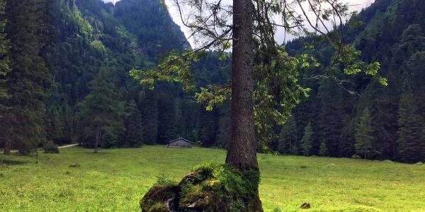 Die Eckaualm am Hochkalter im Bergsteigerdorf Ramsau