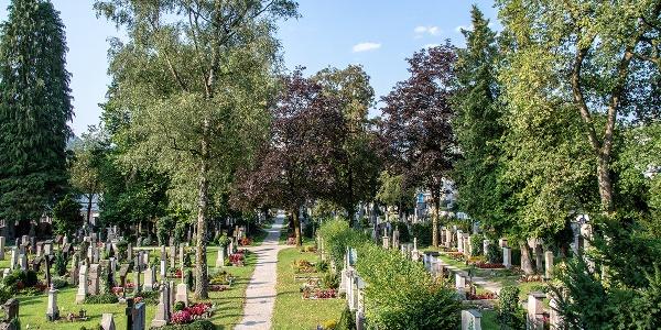 Blick über den Alten Friedhof