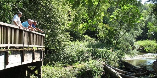 Voetspoor bij Waubach Route