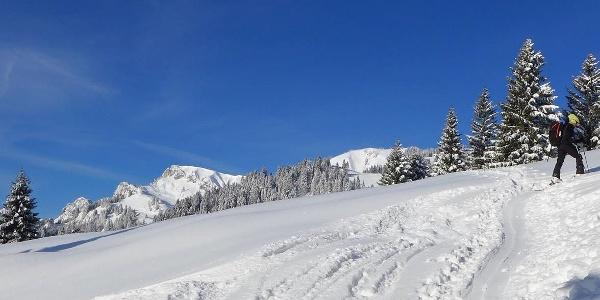 Skitour auf das Brauneck