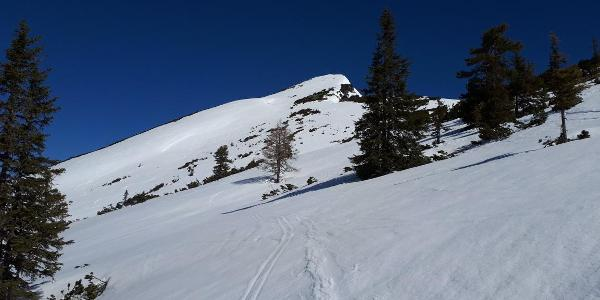 Blick auf den Gipfelhang