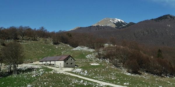 Zapleč Mountain pasture and Mt. Krasji vrh in the background