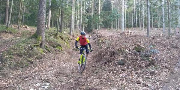 Trail vom Madlkopf