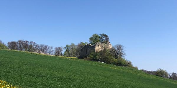 Ruine Neu-Schauenburg